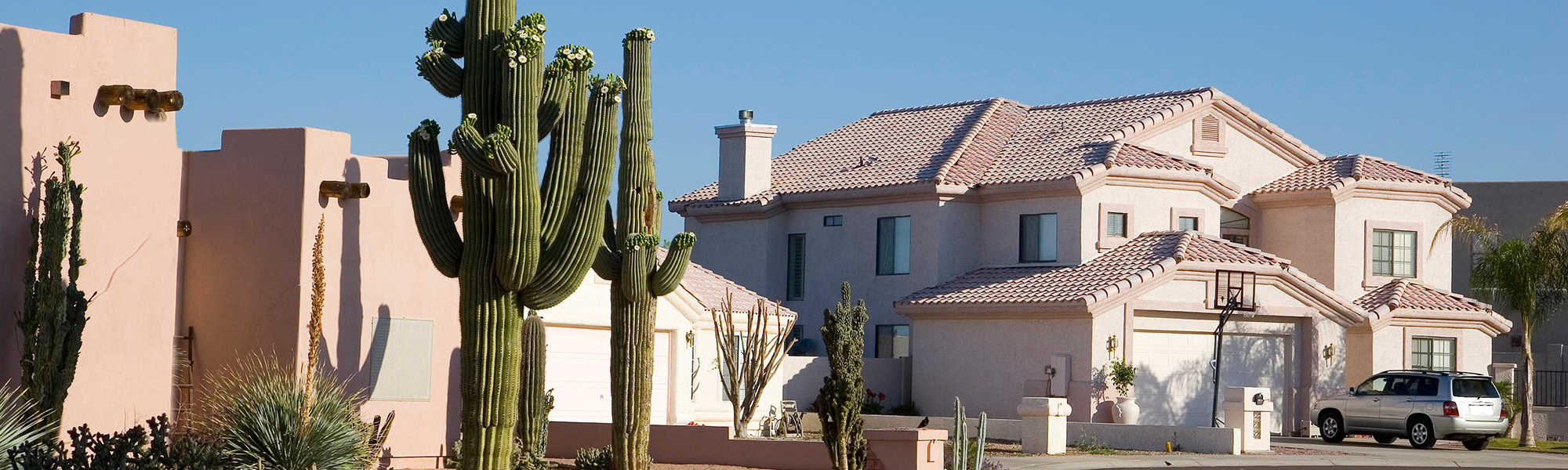 A home in the Southwest with cacti